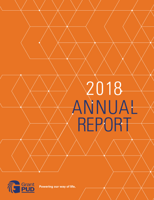 AnnualReport 2018 cover